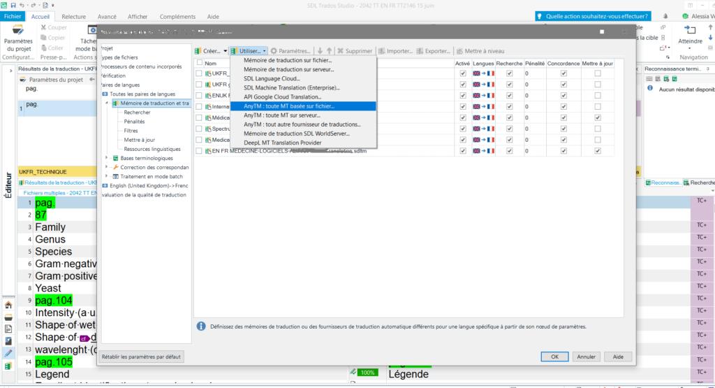 Utiliser AnyTM pour travailler avec une mémoire avec des variantes régionales différentes de celles de votre projet